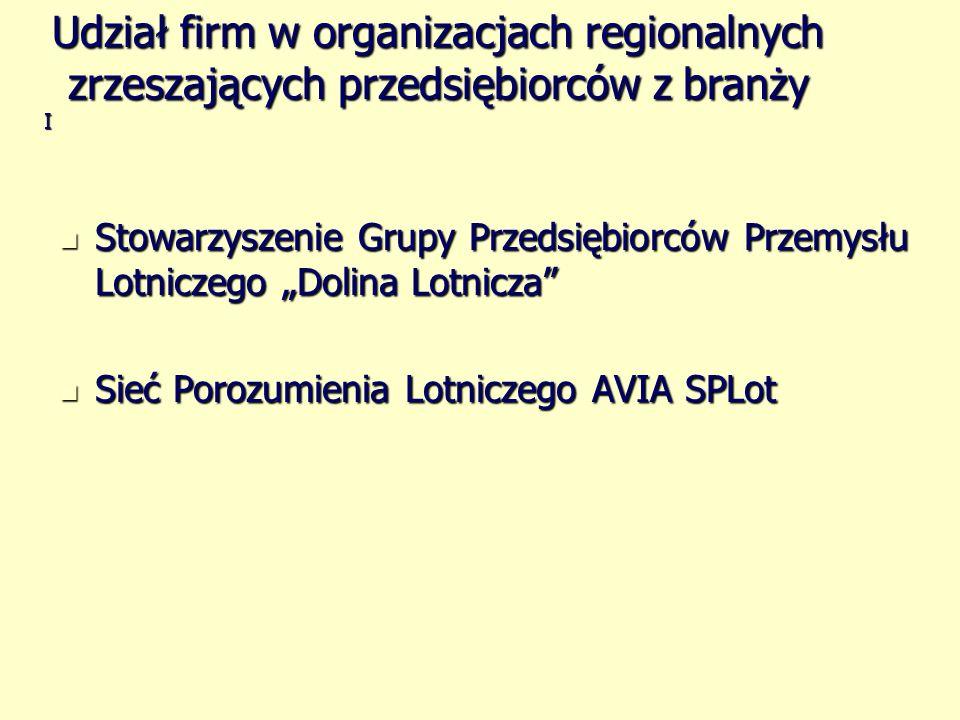 Stowarzyszenie Grupy Przedsiębiorców Przemysłu Lotniczego Dolina Lotnicza Stowarzyszenie Grupy Przedsiębiorców Przemysłu Lotniczego Dolina Lotnicza Si