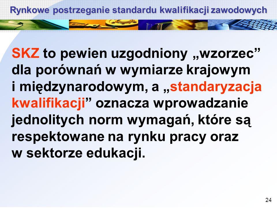 24 SKZ to pewien uzgodniony wzorzec dla porównań w wymiarze krajowym i międzynarodowym, a standaryzacja kwalifikacji oznacza wprowadzanie jednolitych