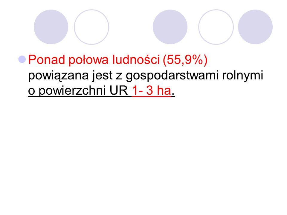 Ponad połowa ludności (55,9%) powiązana jest z gospodarstwami rolnymi o powierzchni UR 1- 3 ha.