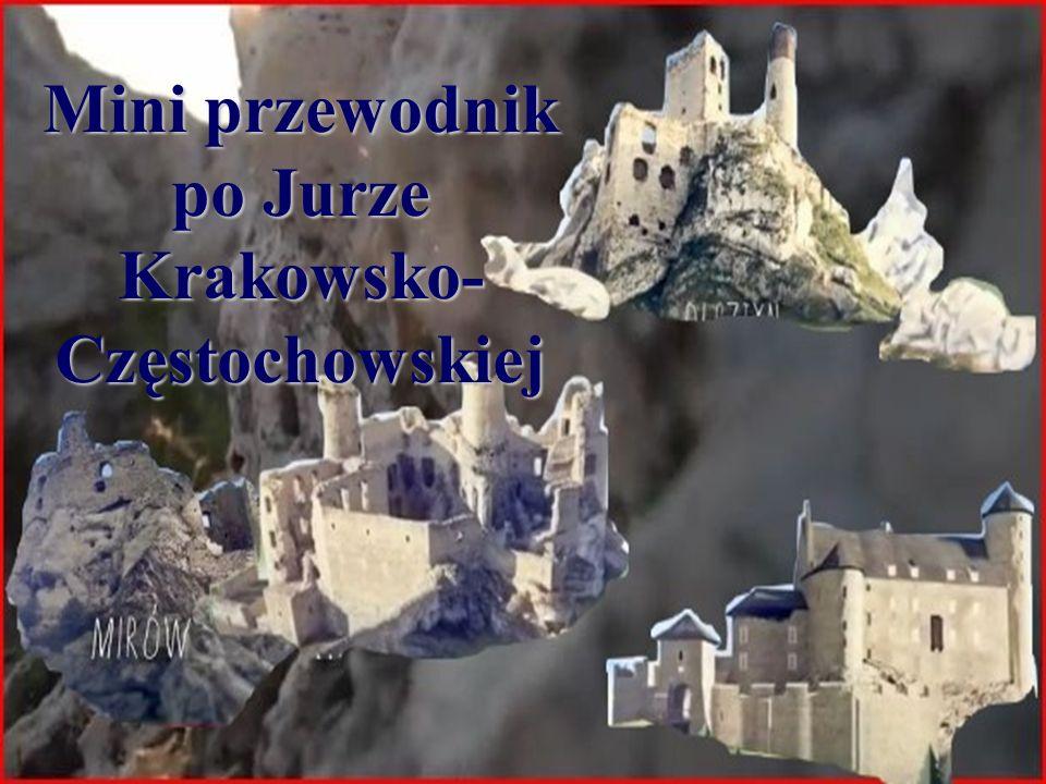 Położenie Część Wyżyny Śląsko-Krakowskiej Ciągnie się od Krakowa na południu przez około 80 km po Wieluń na północy Graniczy od północy z Niziną Wielkopolską, od zachodu z Wyżyną Śląską i Niziną Śląską, od południa z Kotliną Sandomierską i od wschodu z Wyżyną Małopolską.