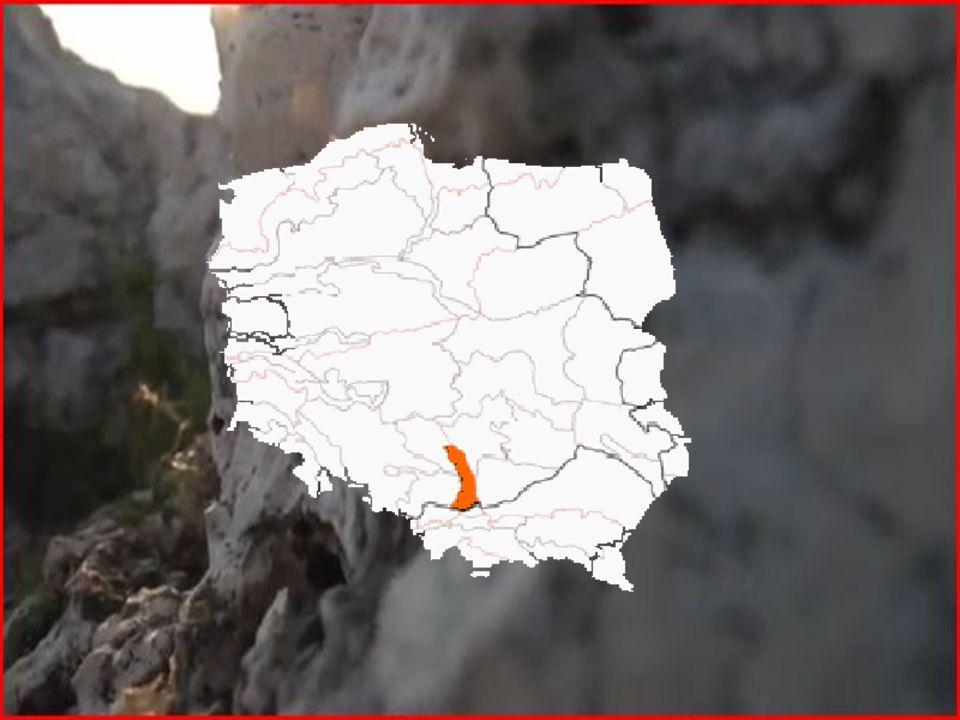 Ukształtowanie terenu Wzgórza wznoszą się na wysokość około 300-500 m n.p.m., a najwyższym wzniesieniem jest Góra Zamkowa (504 m n.p.m.) Skały zbudowane z wapieni górnojurajskich, często pocięte dolinami erozyjnymi Znajduje się tu wiele form krasowych, m.in.