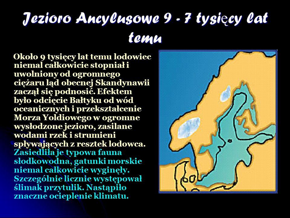 Jezioro Ancylusowe 9 - 7 tysi ę cy lat temu Około 9 tysięcy lat temu lodowiec niemal całkowicie stopniał i uwolniony od ogromnego ciężaru ląd obecnej