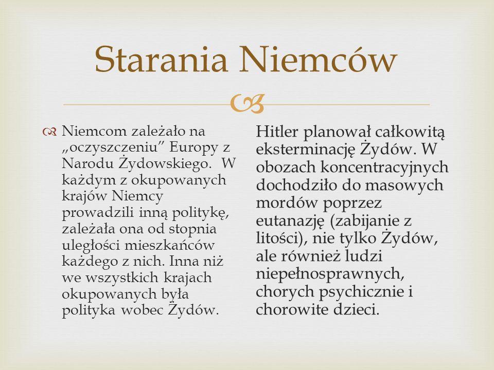 Starania Niemców Niemcom zależało na oczyszczeniu Europy z Narodu Żydowskiego. W każdym z okupowanych krajów Niemcy prowadzili inną politykę, zależała