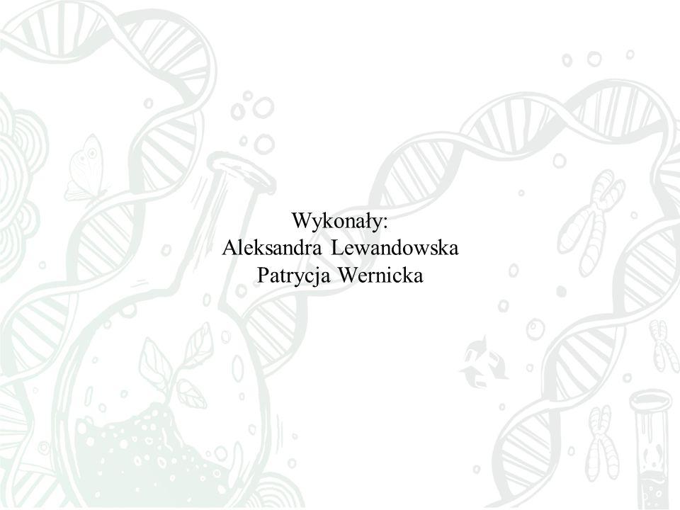 Wykonały: Aleksandra Lewandowska Patrycja Wernicka