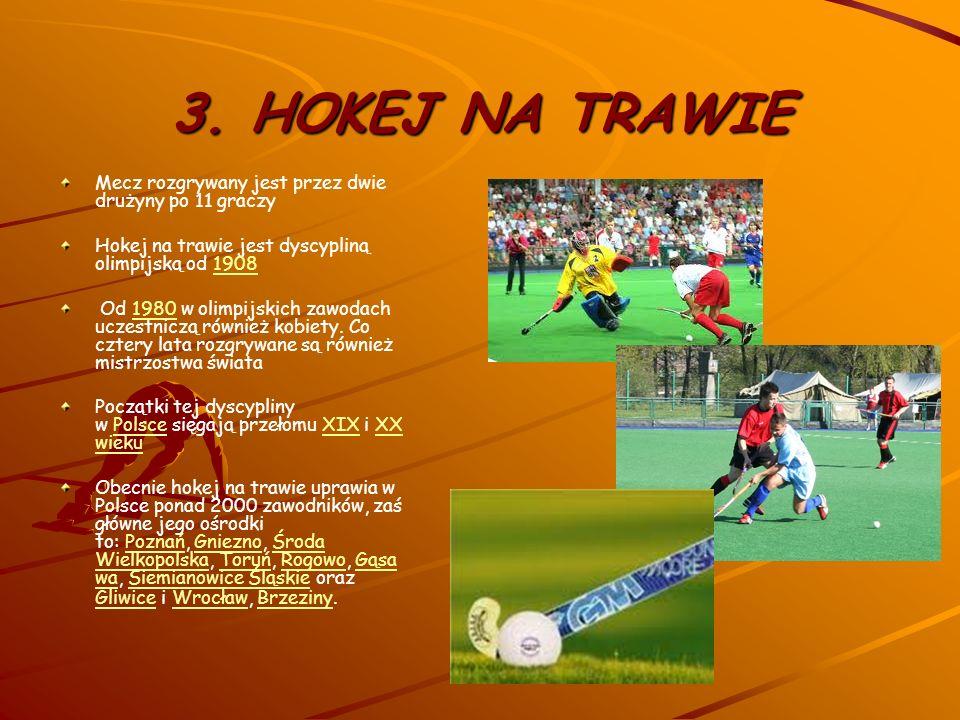 2. KRYKIET sport drużynowy, w którym mecze rozgrywane są między dwiema drużynami po jedenastu zawodnikówsport Pochodzi z Anglii, gdzie podobna gra był