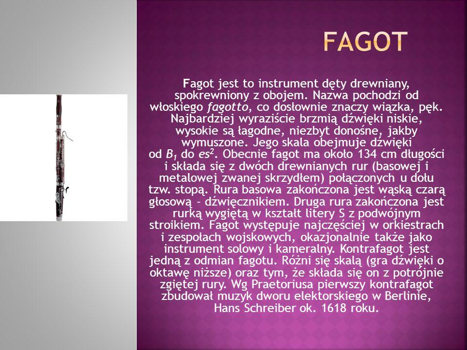 Fagot jest to instrument dęty drewniany, spokrewniony z obojem. Nazwa pochodzi od włoskiego fagotto, co dosłownie znaczy wiązka, pęk. Najbardziej wyra