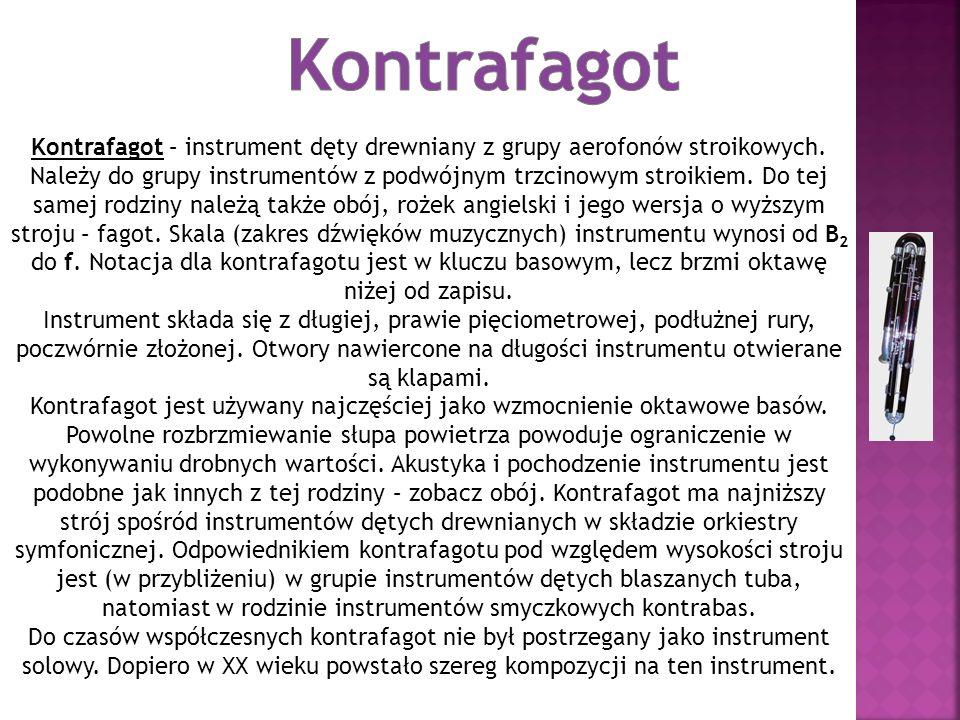 Kontrafagot – instrument dęty drewniany z grupy aerofonów stroikowych. Należy do grupy instrumentów z podwójnym trzcinowym stroikiem. Do tej samej rod