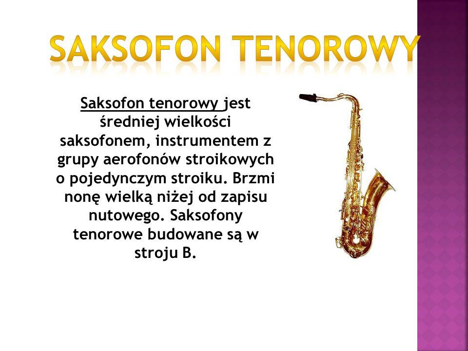 Saksofon tenorowy jest średniej wielkości saksofonem, instrumentem z grupy aerofonów stroikowych o pojedynczym stroiku. Brzmi nonę wielką niżej od zap