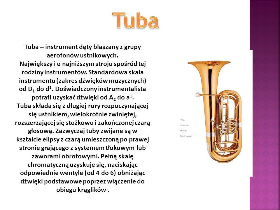 Tuba – instrument dęty blaszany z grupy aerofonów ustnikowych. Największy i o najniższym stroju spośród tej rodziny instrumentów. Standardowa skala in