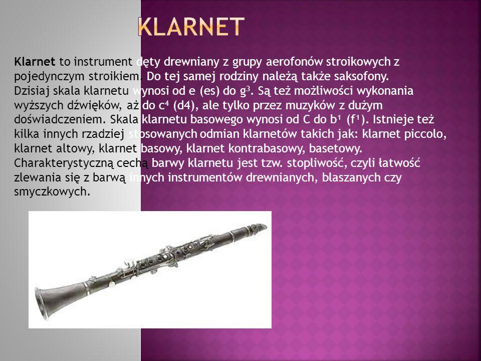 Klarnet to instrument dęty drewniany z grupy aerofonów stroikowych z pojedynczym stroikiem. Do tej samej rodziny należą także saksofony. Dzisiaj skala