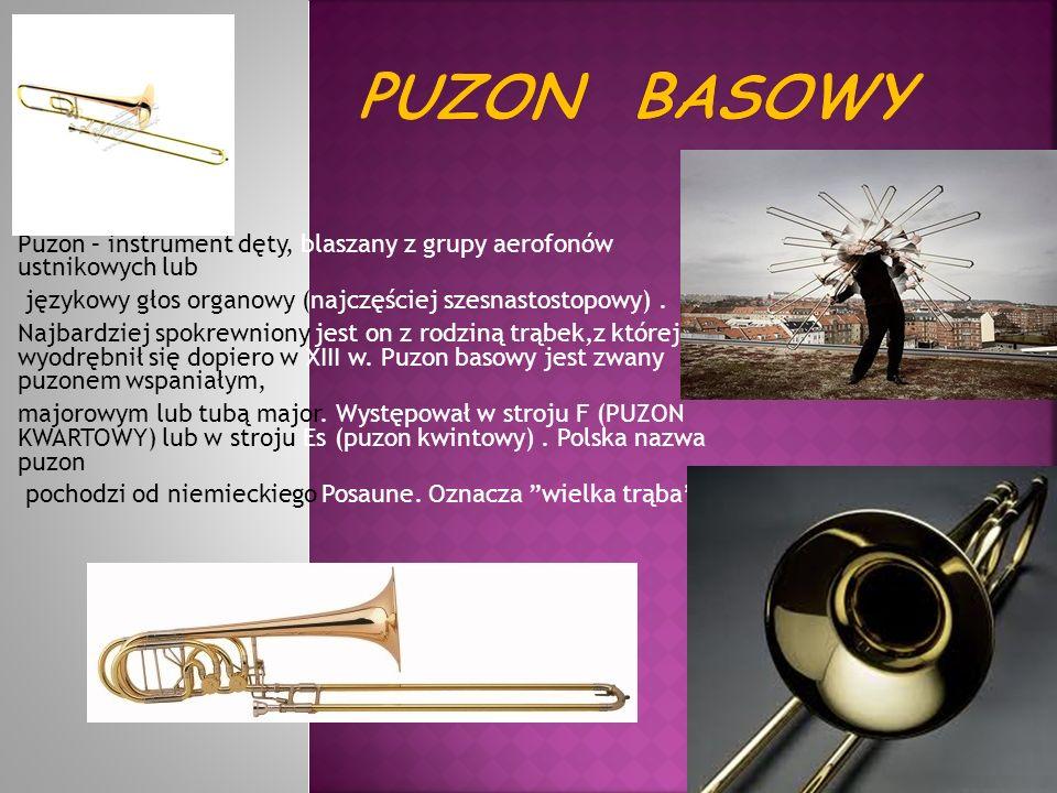 Puzon – instrument dęty, blaszany z grupy aerofonów ustnikowych lub językowy głos organowy (najczęściej szesnastostopowy). Najbardziej spokrewniony je