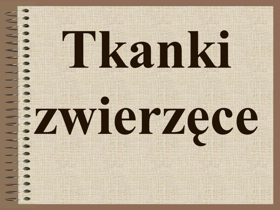 Bibliografia Podręcznik do biologii dla gimnazjum,,Puls życia Nowa Era Wikipedia,,Słownik nauki Poblicat