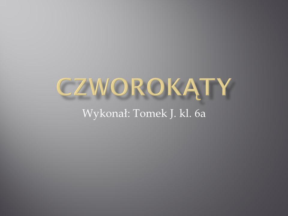 Wykonał: Tomek J. kl. 6a