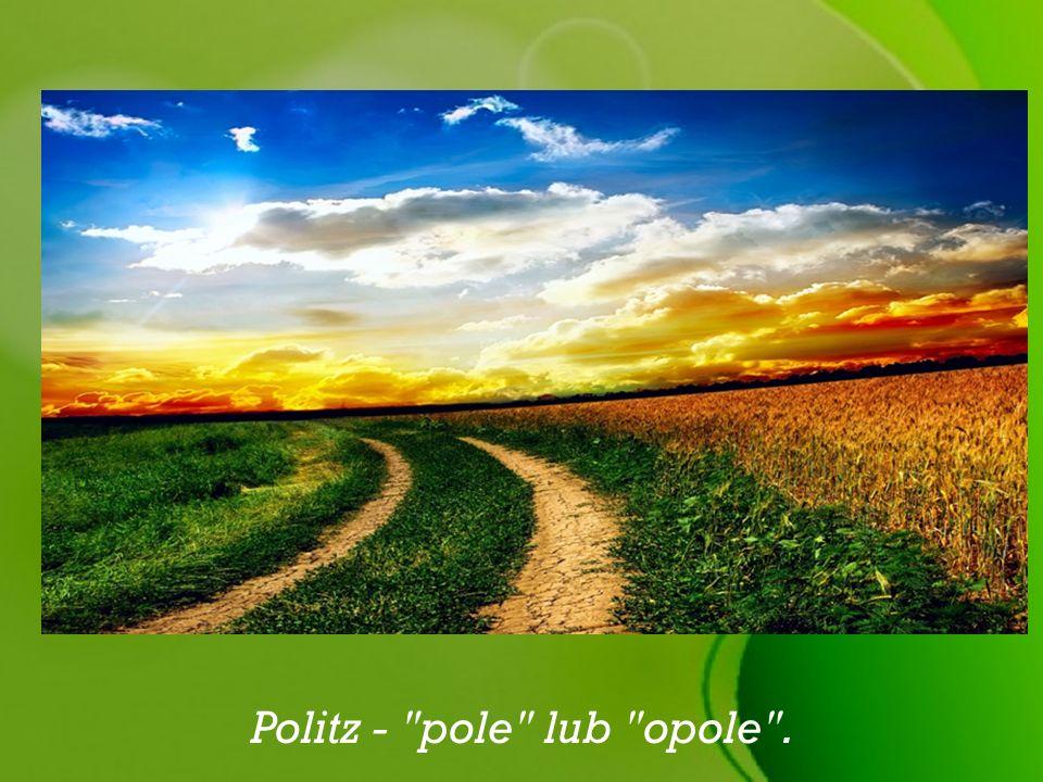 Politz -