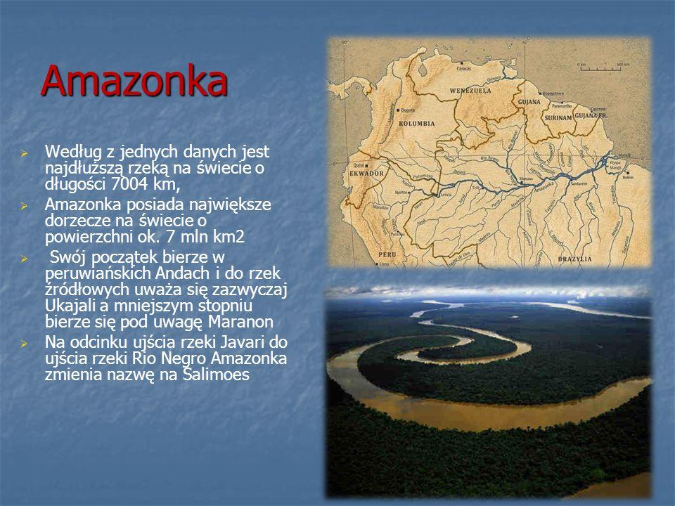 Amazonka Według z jednych danych jest najdłuższą rzeką na świecie o długości 7004 km, Amazonka posiada największe dorzecze na świecie o powierzchni ok