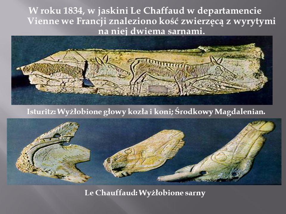 W roku 1834, w jaskini Le Chaffaud w departamencie Vienne we Francji znaleziono kość zwierzęcą z wyrytymi na niej dwiema sarnami. Isturitz: Wyżłobione