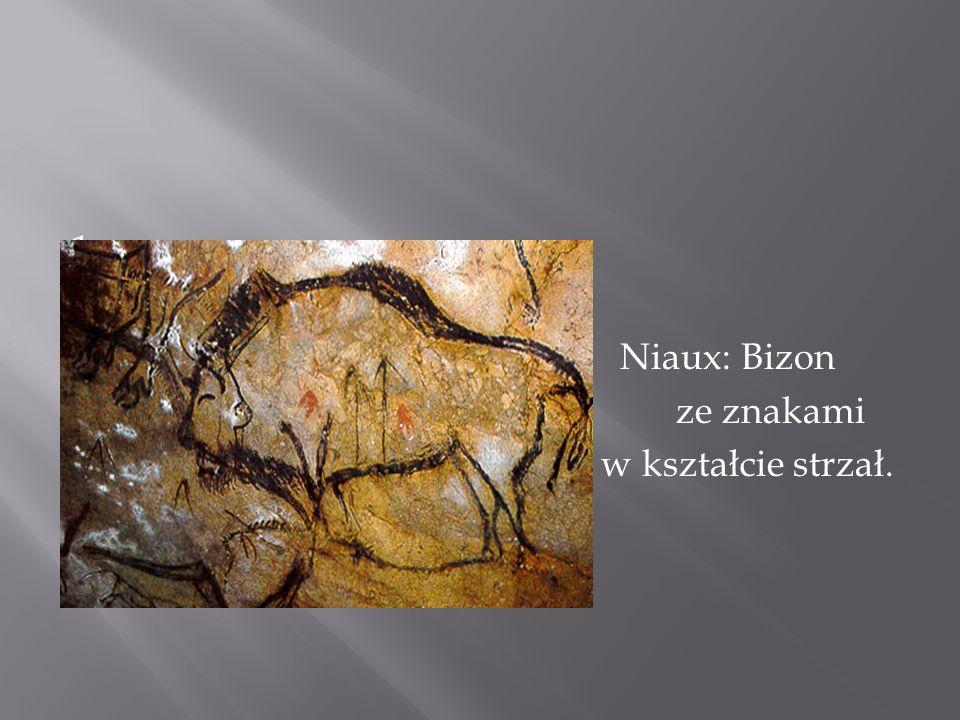 1 Niaux: Bizon ze znakami w kształcie strzał.