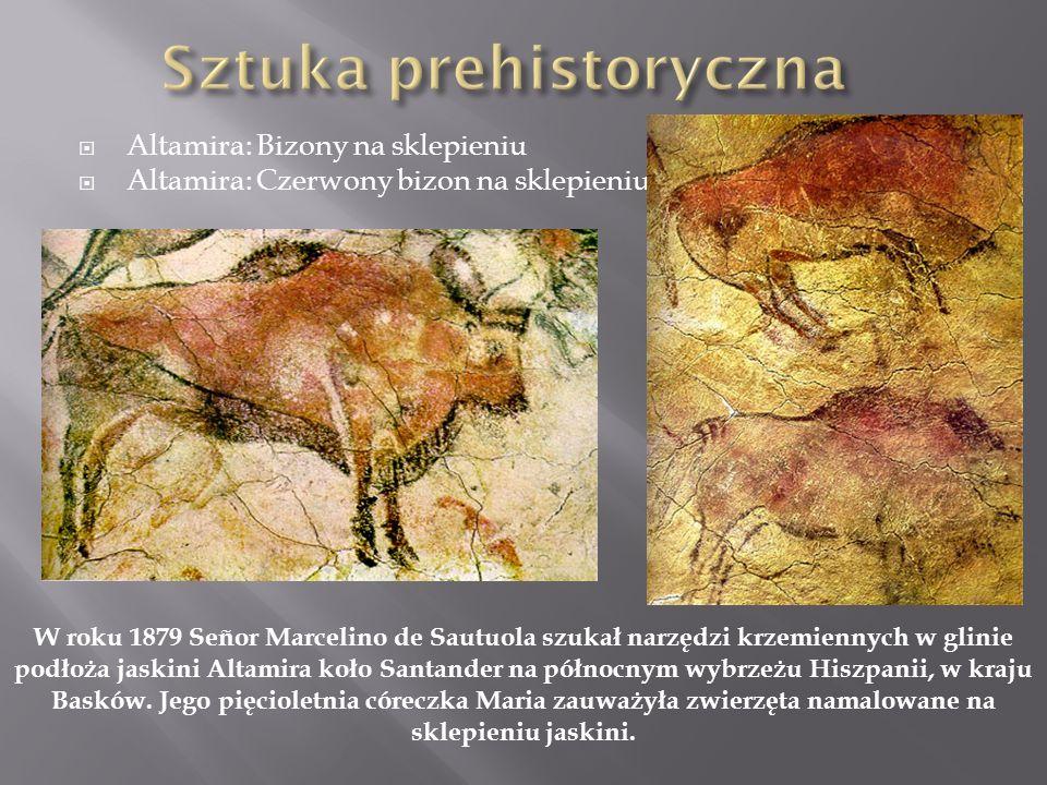 Altamira: Bizony na sklepieniu Altamira: Czerwony bizon na sklepieniu W roku 1879 Señor Marcelino de Sautuola szukał narzędzi krzemiennych w glinie po