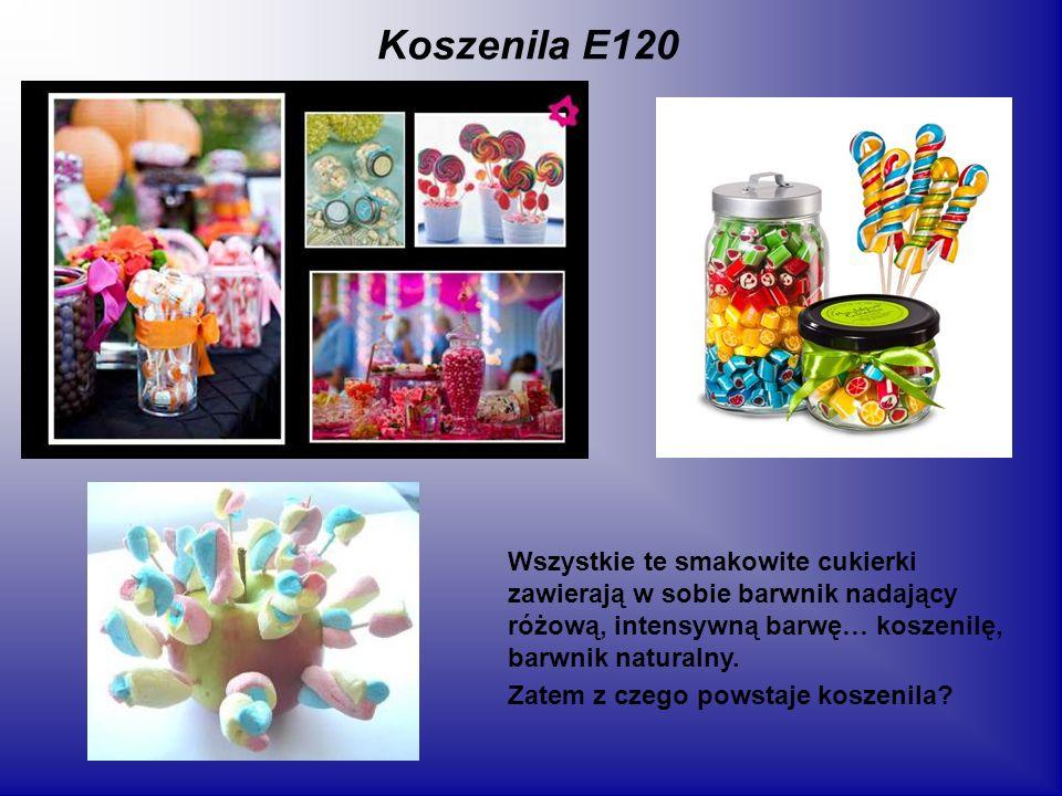 Koszenila E120 Wszystkie te smakowite cukierki zawierają w sobie barwnik nadający różową, intensywną barwę… koszenilę, barwnik naturalny. Zatem z czeg