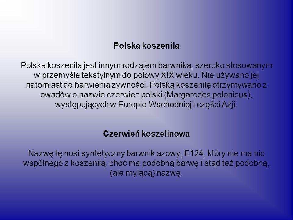 Polska koszenila Polska koszenila jest innym rodzajem barwnika, szeroko stosowanym w przemyśle tekstylnym do połowy XIX wieku. Nie używano jej natomia