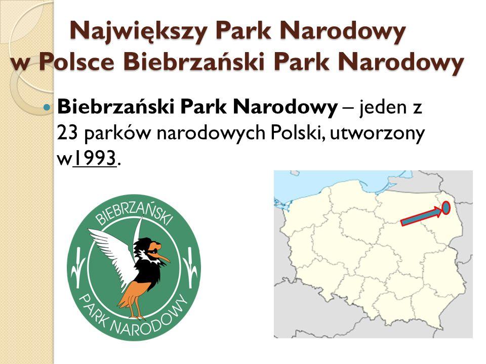 Największy Park Narodowy w Polsce Biebrzański Park Narodowy Biebrzański Park Narodowy – jeden z 23 parków narodowych Polski, utworzony w1993.