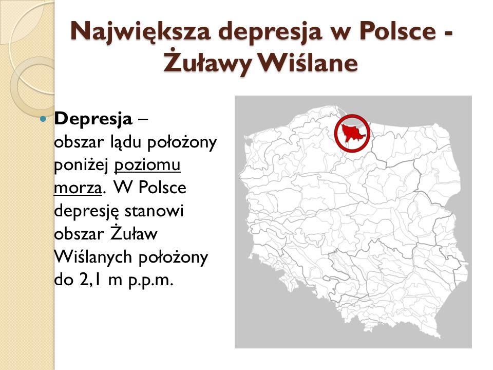 Największa depresja w Polsce - Żuławy Wiślane Depresja – obszar lądu położony poniżej poziomu morza. W Polsce depresję stanowi obszar Żuław Wiślanych