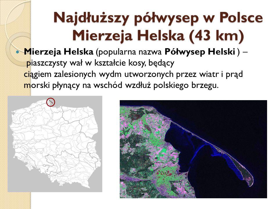 Najdłuższy półwysep w Polsce Mierzeja Helska (43 km) Mierzeja Helska (popularna nazwa Półwysep Helski ) – piaszczysty wał w kształcie kosy, będący cią