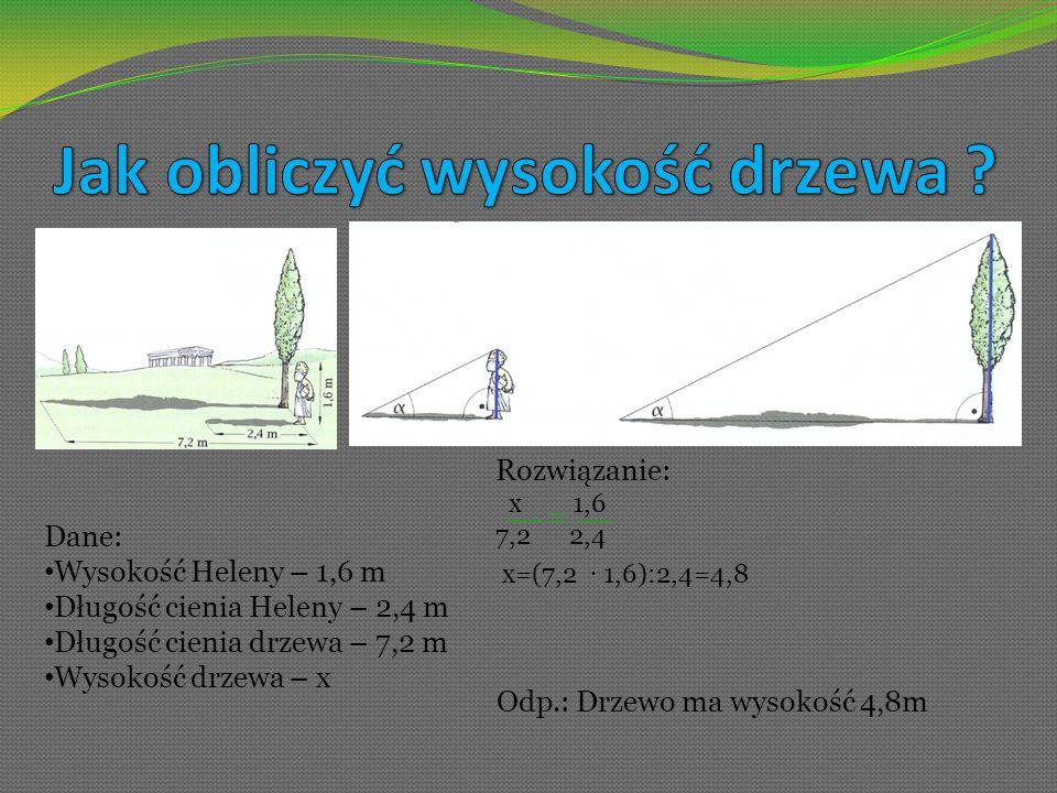 Dane: Wysokość Heleny – 1,6 m Długość cienia Heleny – 2,4 m Długość cienia drzewa – 7,2 m Wysokość drzewa – x Rozwiązanie: x 1,6 7,2 2,4 x=(7,2 1,6):2