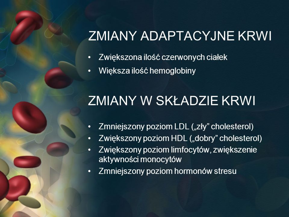 ZMIANY ADAPTACYJNE KRWI Zwiększona ilość czerwonych ciałek Większa ilość hemoglobiny ZMIANY W SKŁADZIE KRWI Zmniejszony poziom LDL (zły cholesterol) Z