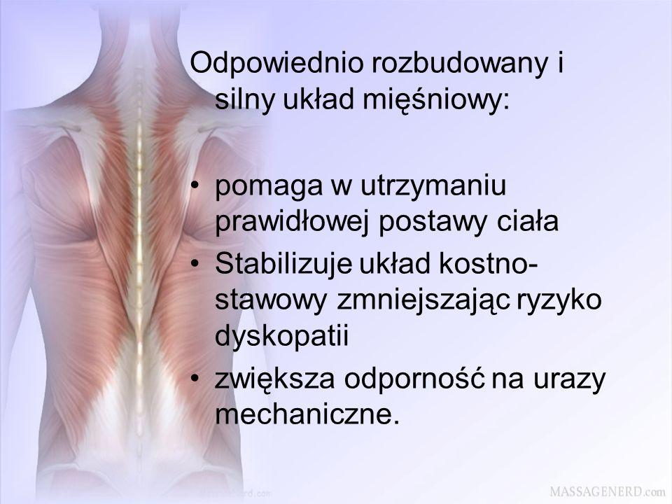 Odpowiednio rozbudowany i silny układ mięśniowy: pomaga w utrzymaniu prawidłowej postawy ciała Stabilizuje układ kostno- stawowy zmniejszając ryzyko d