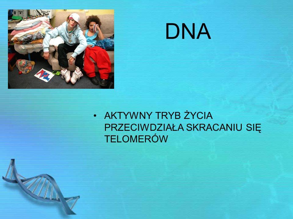 DNA AKTYWNY TRYB ŻYCIA PRZECIWDZIAŁA SKRACANIU SIĘ TELOMERÓW