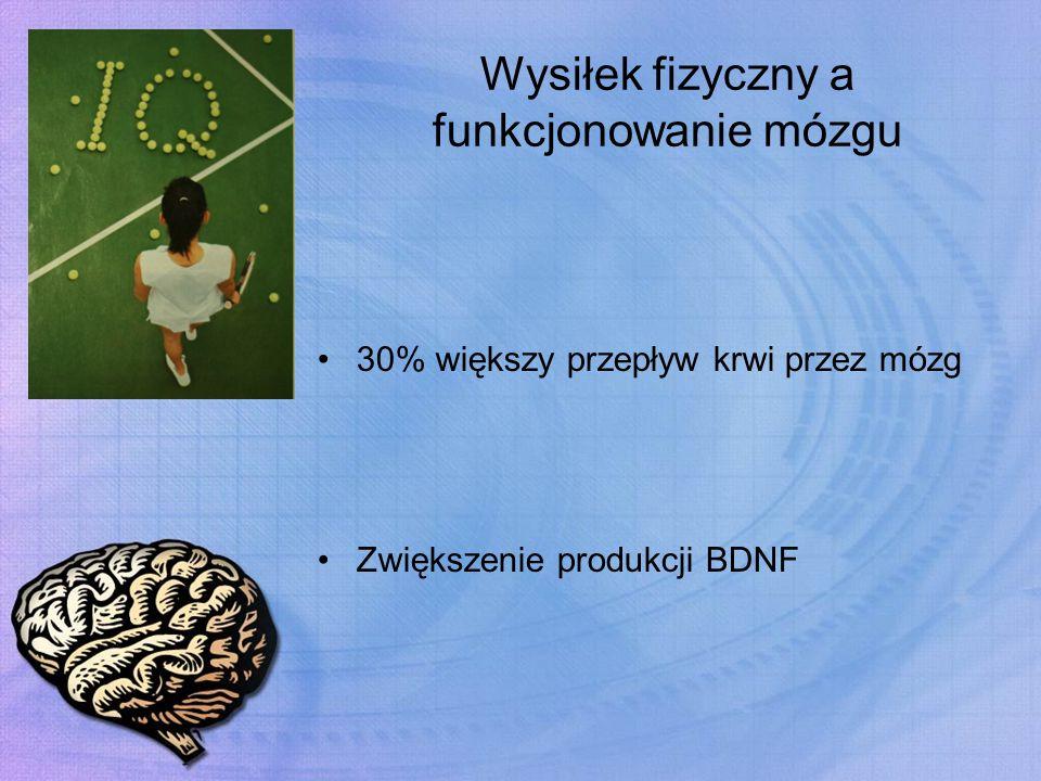 Wysiłek fizyczny a funkcjonowanie mózgu 30% większy przepływ krwi przez mózg Zwiększenie produkcji BDNF