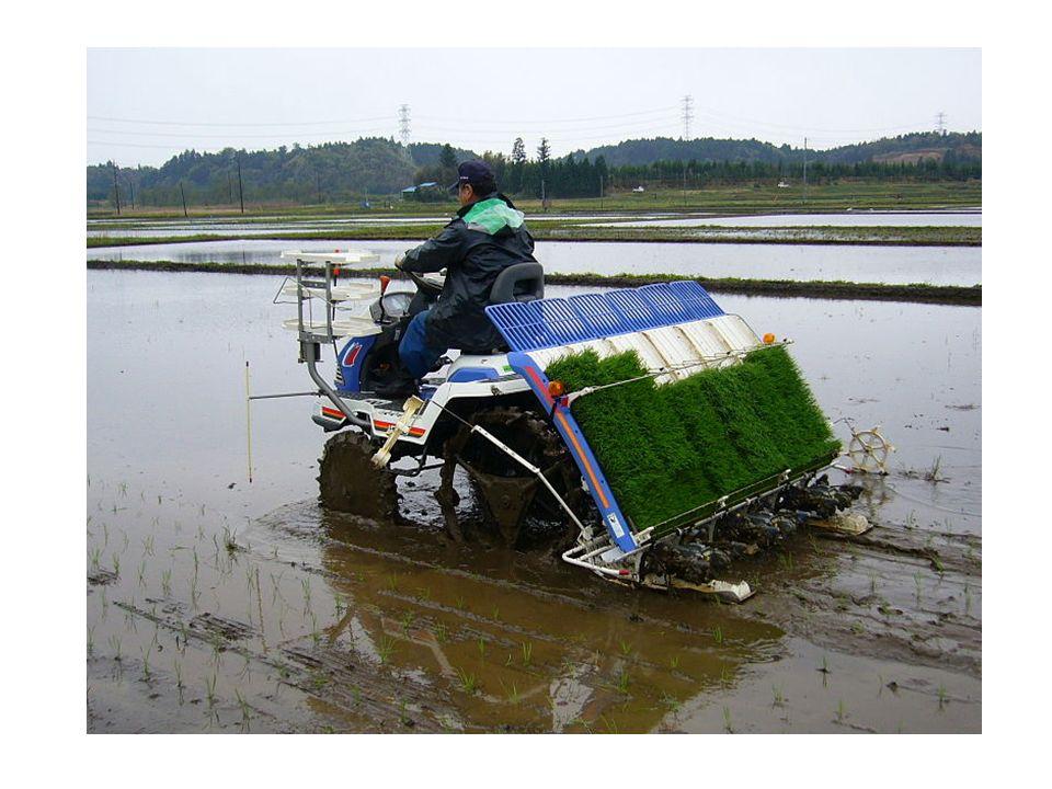 Agregat uprawowy To maszyna rolnicza służąca do kompleksowego rozdrabniania i spulchniania gleby uprawnej.