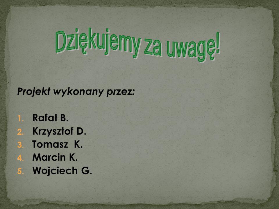 Projekt wykonany przez: 1. Rafał B. 2. Krzysztof D. 3. Tomasz K. 4. Marcin K. 5. Wojciech G.