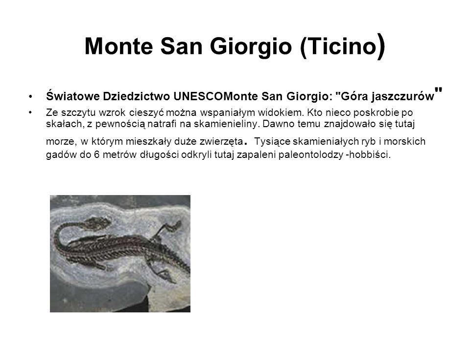 Monte San Giorgio (Ticino ) Światowe Dziedzictwo UNESCOMonte San Giorgio: