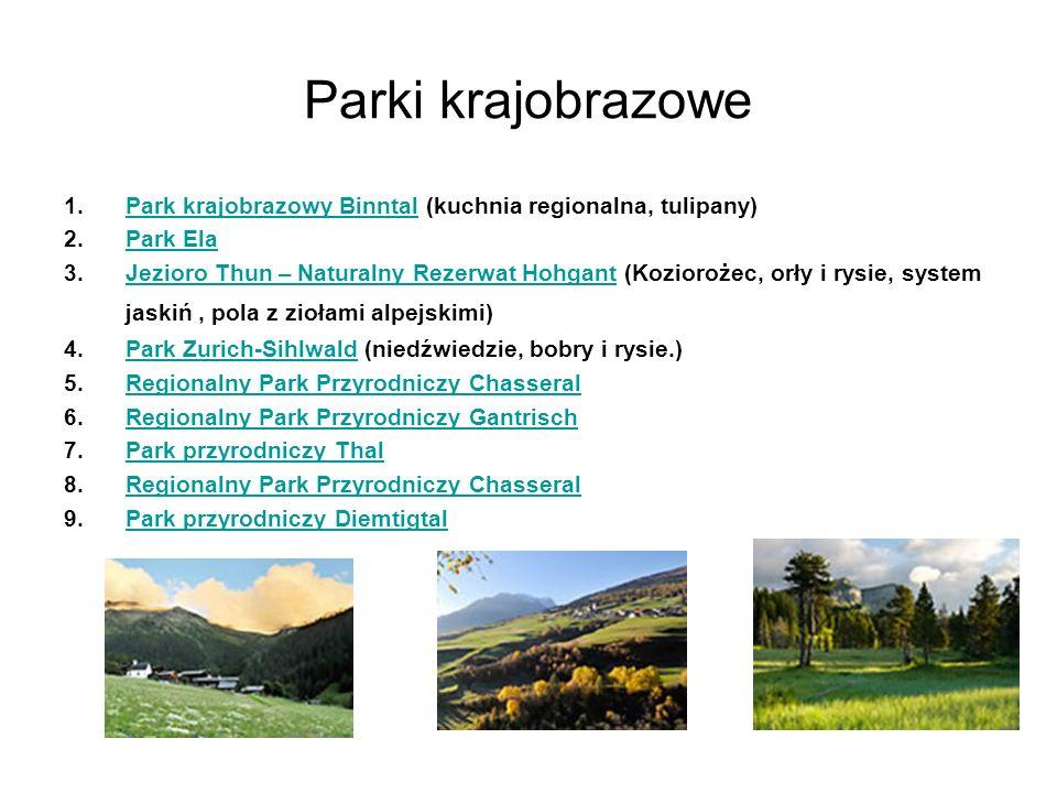 Parki krajobrazowe 1.Park krajobrazowy Binntal (kuchnia regionalna, tulipany)Park krajobrazowy Binntal 2.Park ElaPark Ela 3.Jezioro Thun – Naturalny R