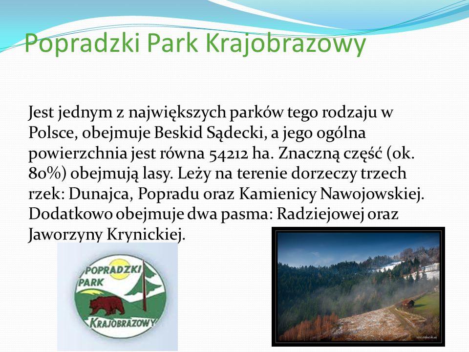 Popradzki Park Krajobrazowy Jest jednym z największych parków tego rodzaju w Polsce, obejmuje Beskid Sądecki, a jego ogólna powierzchnia jest równa 54