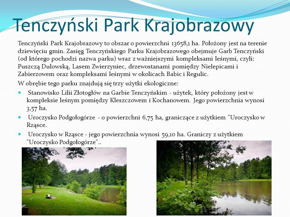 Tenczyński Park Krajobrazowy Tenczyński Park Krajobrazowy to obszar o powierzchni 13658,1 ha. Położony jest na terenie dziewięciu gmin. Zasięg Tenczyń