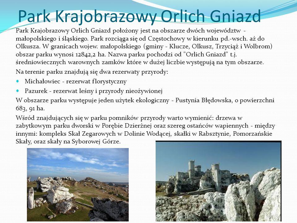 Park Krajobrazowy Orlich Gniazd Park Krajobrazowy Orlich Gniazd położony jest na obszarze dwóch województw - małopolskiego i śląskiego. Park rozciąga
