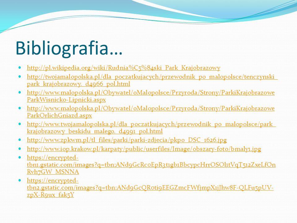 Bibliografia… http://pl.wikipedia.org/wiki/Rudnia%C5%84ski_Park_Krajobrazowy http://twojamalopolska.pl/dla_poczatkujacych/przewodnik_po_malopolsce/ten