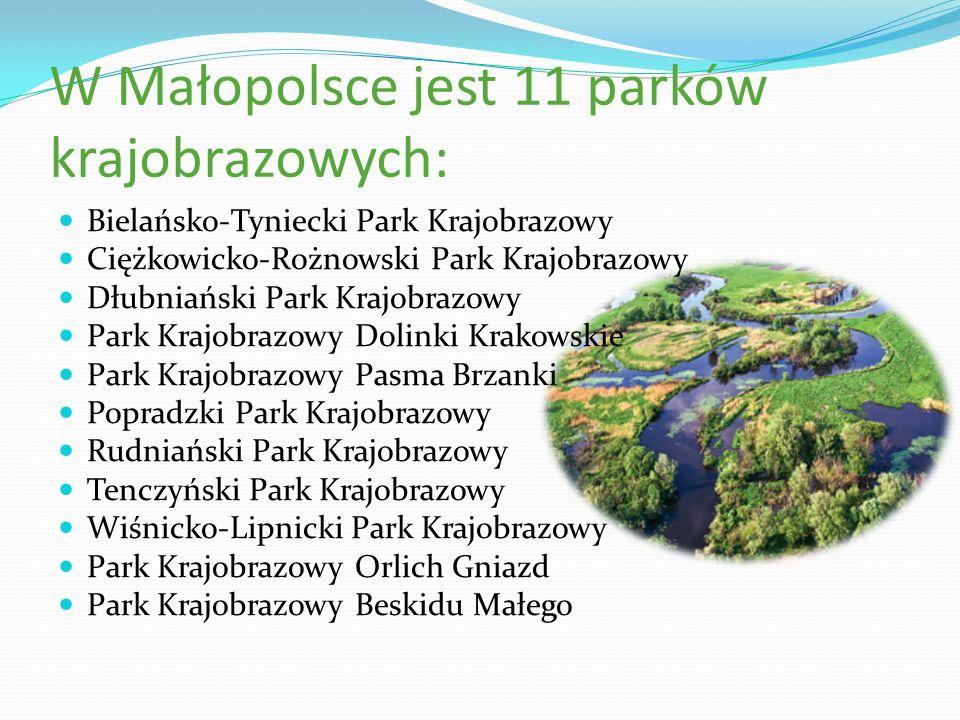 W Małopolsce jest 11 parków krajobrazowych: Bielańsko-Tyniecki Park Krajobrazowy Ciężkowicko-Rożnowski Park Krajobrazowy Dłubniański Park Krajobrazowy