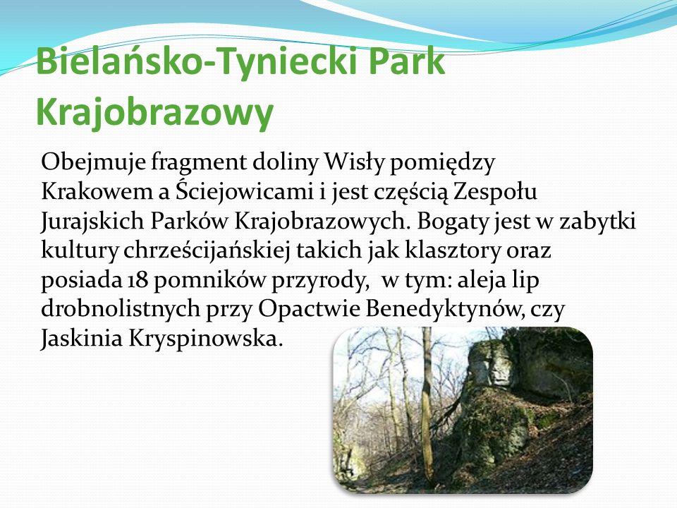 Bielańsko-Tyniecki Park Krajobrazowy Obejmuje fragment doliny Wisły pomiędzy Krakowem a Ściejowicami i jest częścią Zespołu Jurajskich Parków Krajobra
