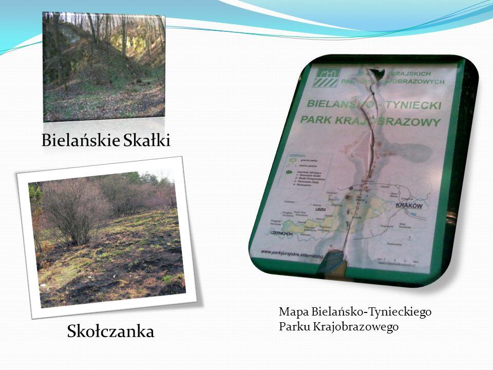 Bielańskie Skałki Skołczanka Mapa Bielańsko-Tynieckiego Parku Krajobrazowego