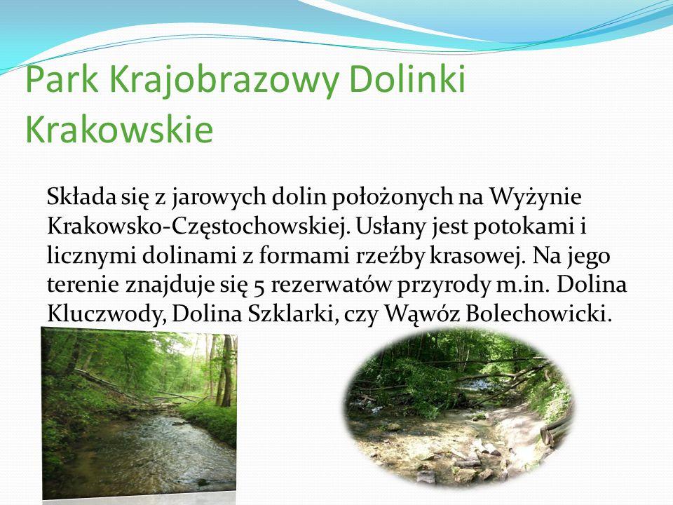 Park Krajobrazowy Dolinki Krakowskie Składa się z jarowych dolin położonych na Wyżynie Krakowsko-Częstochowskiej. Usłany jest potokami i licznymi doli