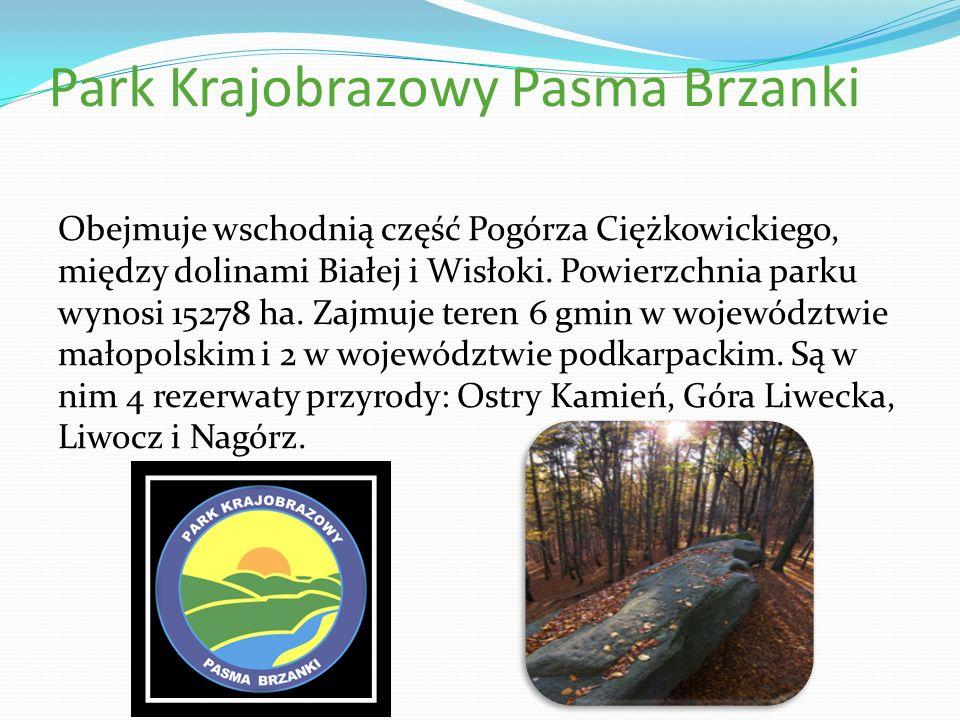 Park Krajobrazowy Pasma Brzanki Obejmuje wschodnią część Pogórza Ciężkowickiego, między dolinami Białej i Wisłoki. Powierzchnia parku wynosi 15278 ha.