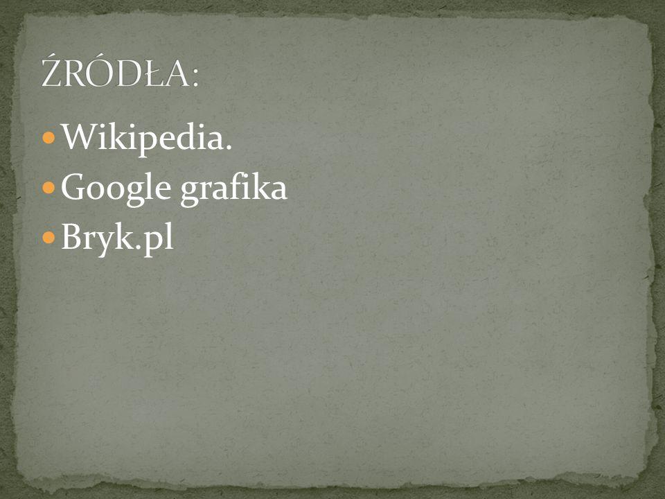 Wikipedia. Google grafika Bryk.pl