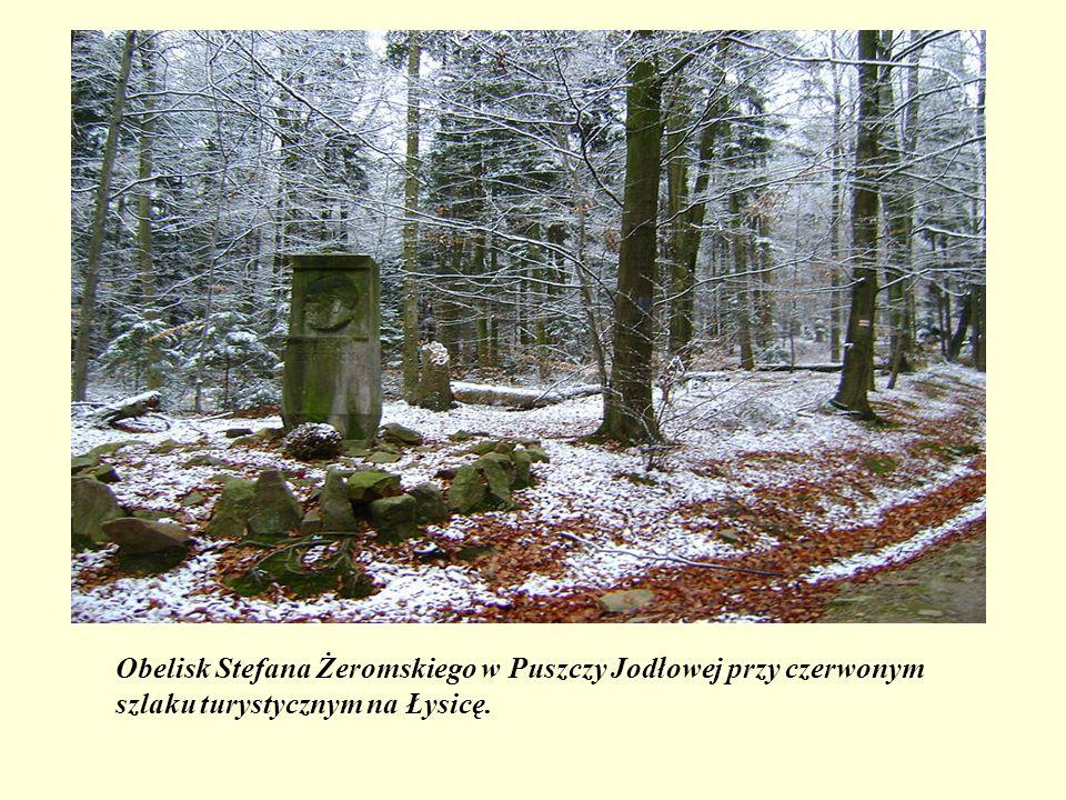Obelisk Stefana Żeromskiego w Puszczy Jodłowej przy czerwonym szlaku turystycznym na Łysicę.