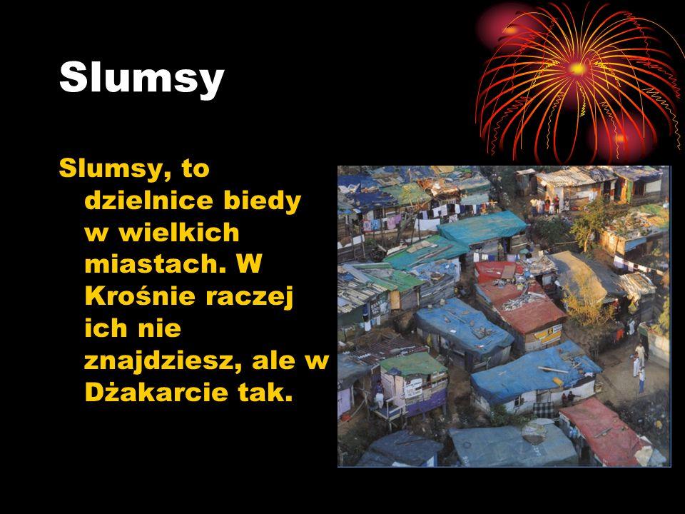 Slumsy Slumsy, to dzielnice biedy w wielkich miastach. W Krośnie raczej ich nie znajdziesz, ale w Dżakarcie tak.