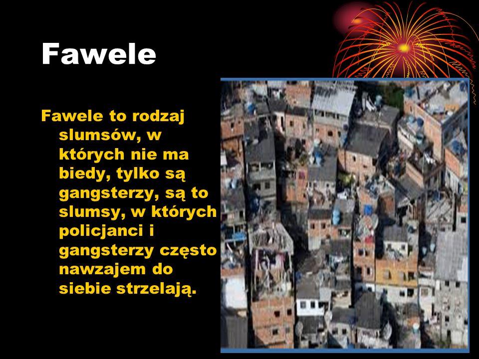 Fawele Fawele to rodzaj slumsów, w których nie ma biedy, tylko są gangsterzy, są to slumsy, w których policjanci i gangsterzy często nawzajem do siebi