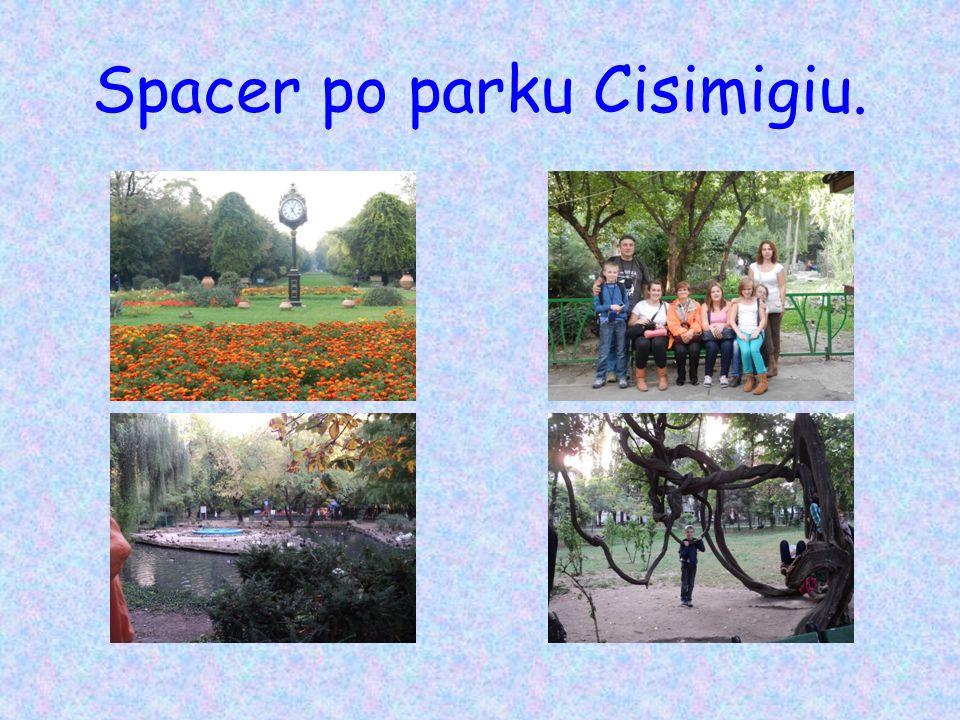 Spacer po parku Cisimigiu.